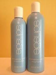 Aquage Color Protecting Shampoo 12 oz & Conditioner 8 oz DUO